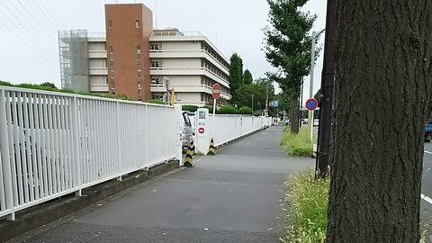 府中運転免許試験場,徒歩,武蔵小金井駅,所要時間