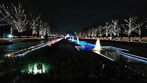 昭和記念公園イルミネーション