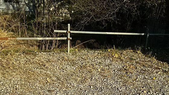 大雪の次の日、お湯や水で雪を解かすのは絶対にダメと言われていますが・・・