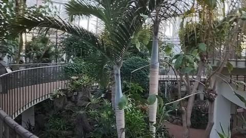 グリーンセンター川口市