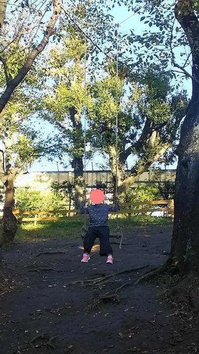 羽根木公園,子連れ,迷路,プレイパーク,駐車場,hanegikouenplaypark18102704