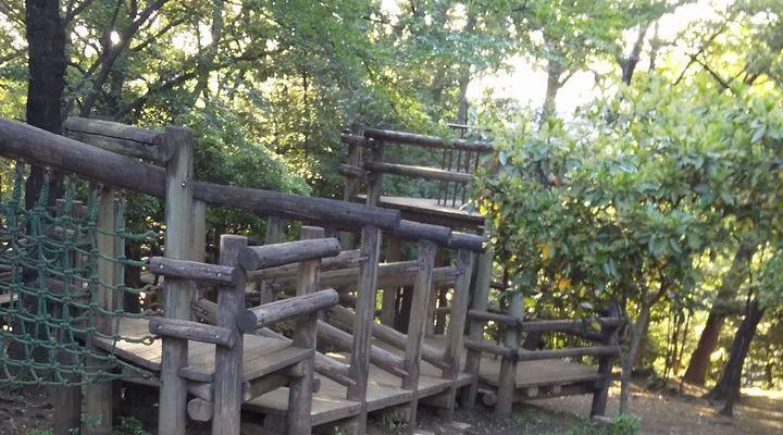 埼玉朝霞,滝の根公園,アスレチック,takinonekouenathletic03