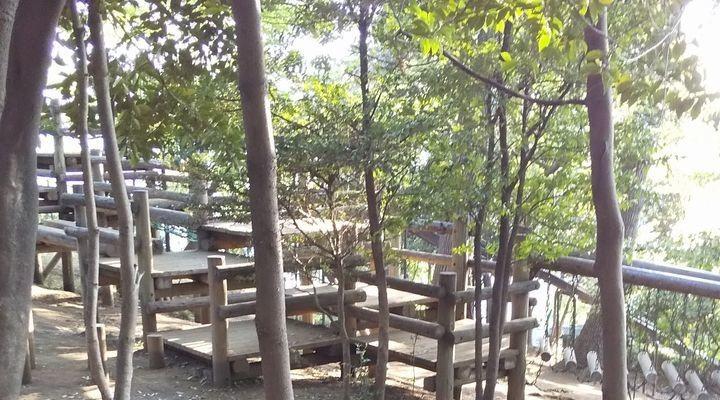 埼玉朝霞,滝の根公園,アスレチック,takinonekouenathletic04