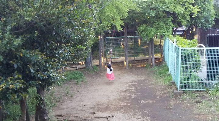 埼玉朝霞,滝の根公園,アスレチック,takinonekouenathletictazanrope05