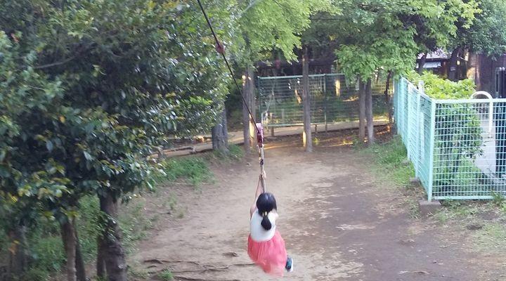 埼玉朝霞,滝の根公園,アスレチック,takinonekouenathletictazanrope06