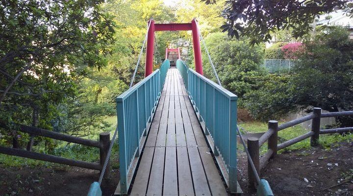 埼玉朝霞,滝の根公園,アスレチック,takinonekouenbridge01