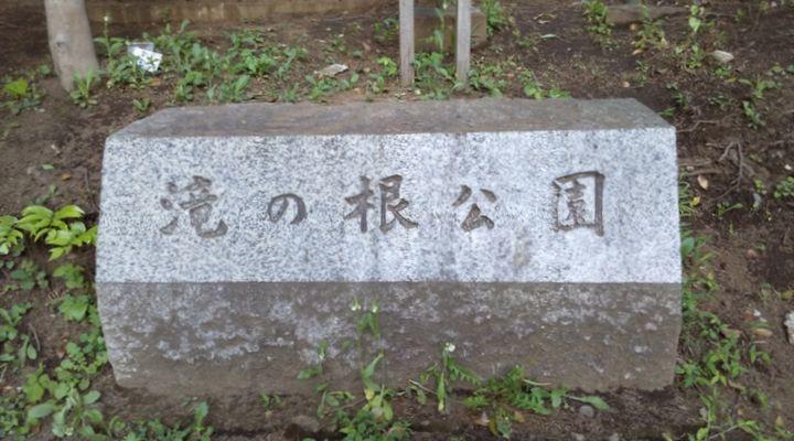 埼玉朝霞,滝の根公園,アスレチック,takinonekoueniriguti01